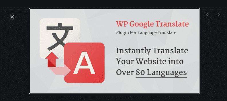 Google translate feature