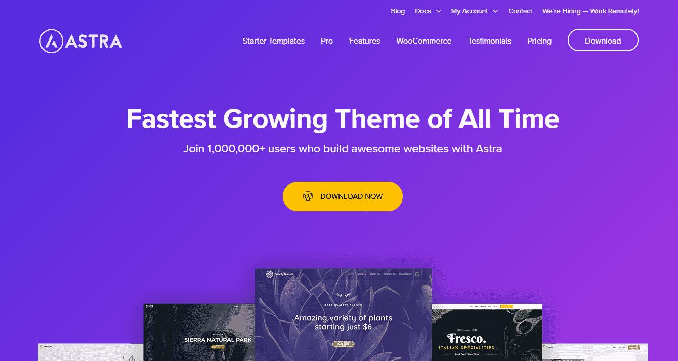 ecommerce, blogging theme