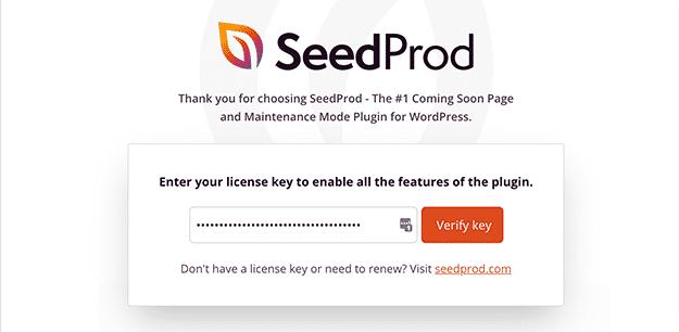 SeedProd landing page plugin